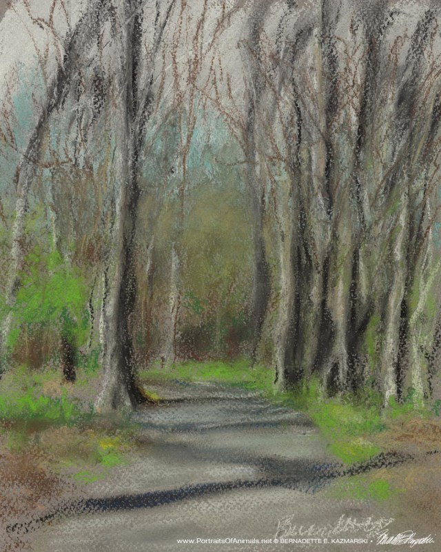 pastel painting of trees in spring woods