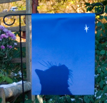 Star of Wonder garden flag.
