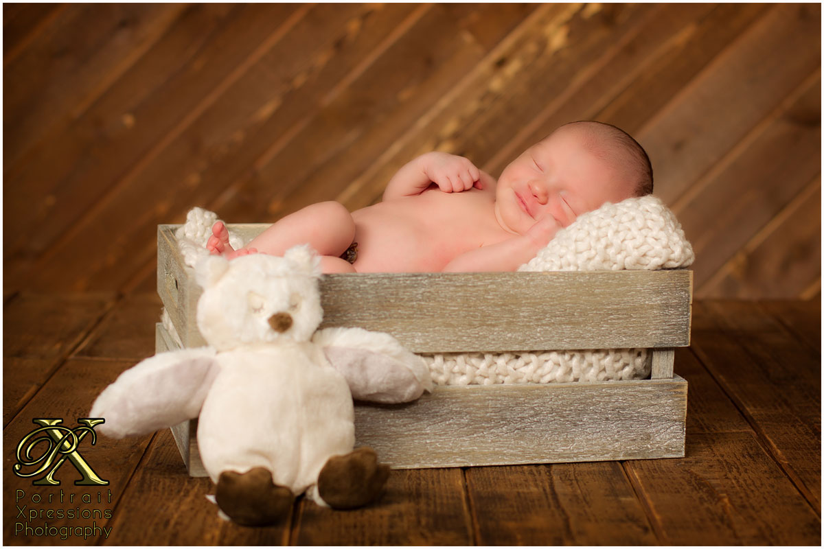 baby in wooden basket and owl