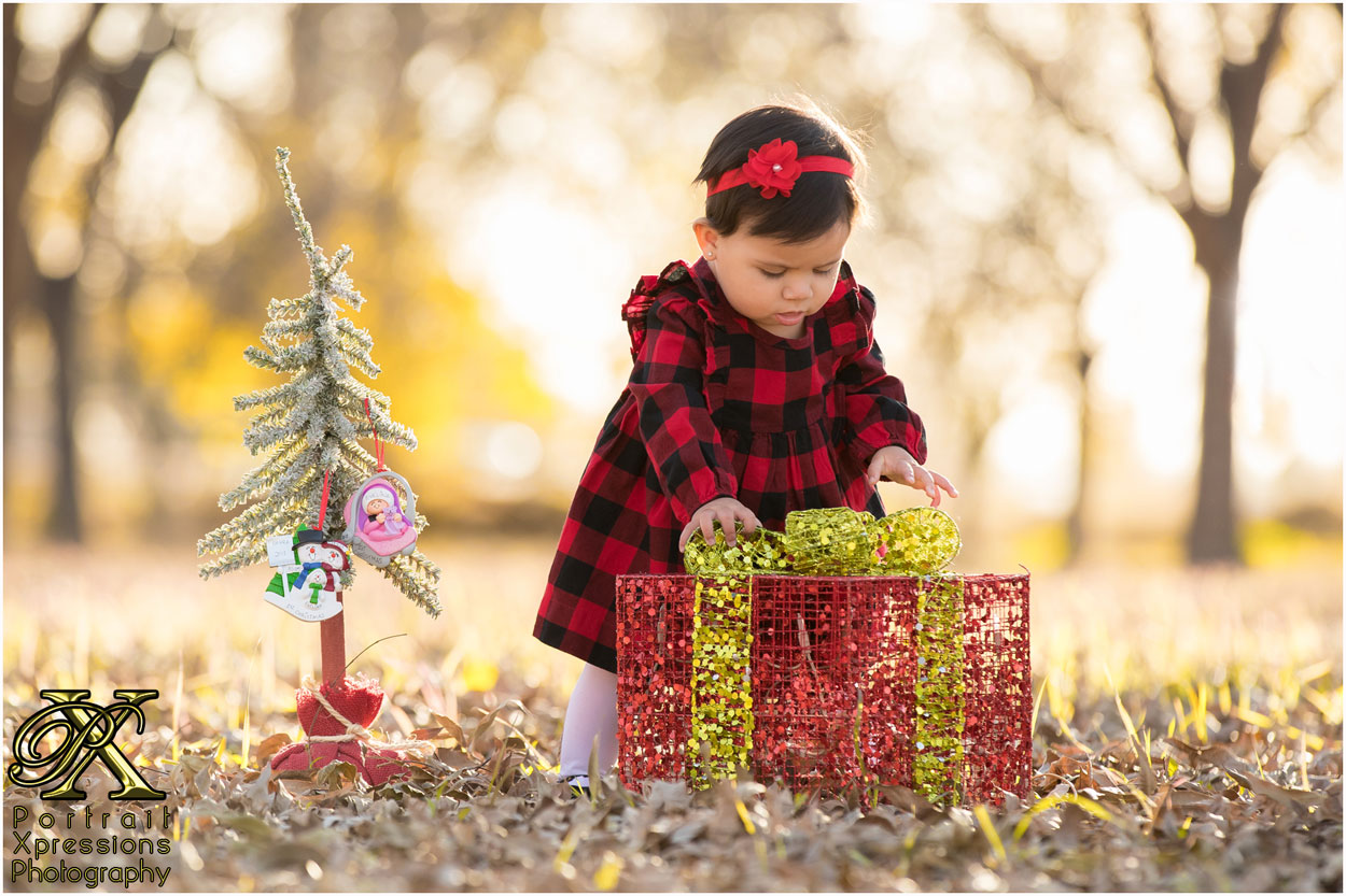 9 month baby with Christmas tree and gift box