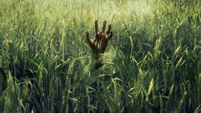 Divulgado primeiro trailer de In the Tall Grass