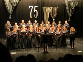 I also went to a show at Gois' cultural centre , where I particularly enjoying watching the choir and fado.