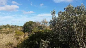 1.35ha land close to Barao de Sao Joao L.22