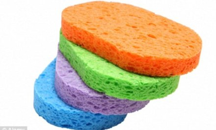 The kitchen sponge is 200,000 times dirtier than a toilet seat – and could even lead to PARALYSIS