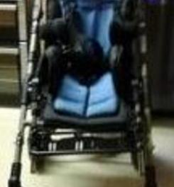 Custom made disability buggy-seat stolen in Cheltenham
