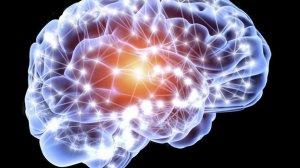 _78807468_neurons