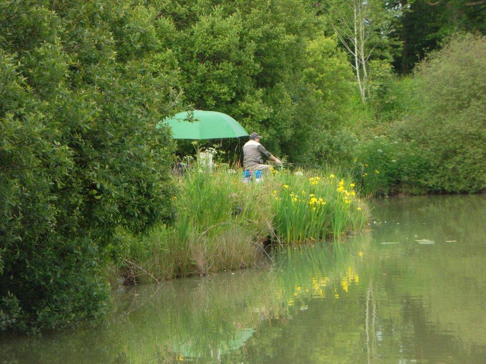 10 Coarse fishing on the lake