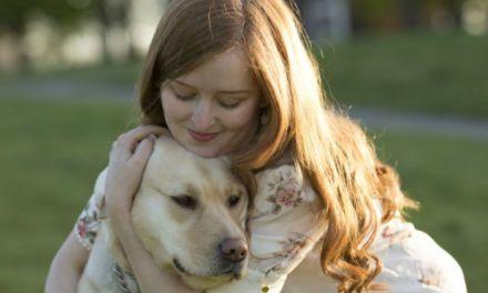 Vote Emily Davison for National Diversity Award