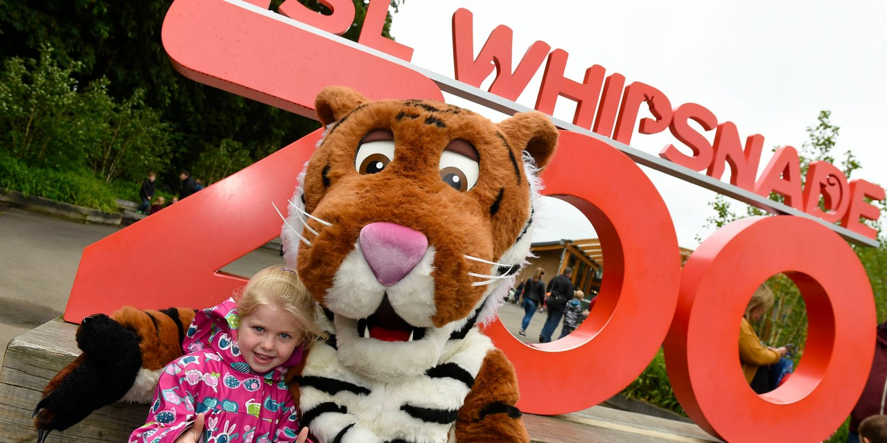 ZSL Whipsnade Zoo's Children's Day Success