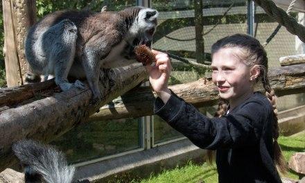 Oh, oobee doo . . . everyone can be like zoo-oo!!