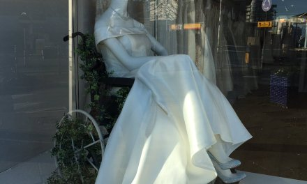 Bridal shop praised for using wheelchair in window display