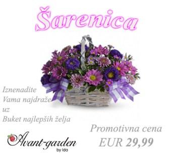 sarenica-3