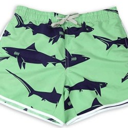 Women Beach shorts shark