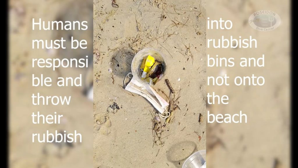 Beach Clean Up