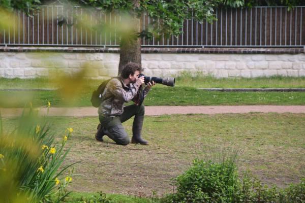 Photographe animalier
