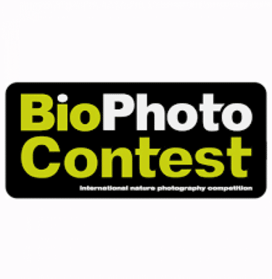 bio photo contest