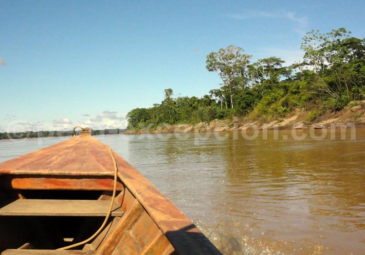 Amazonie barque