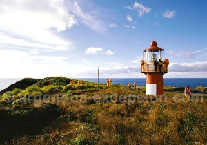 Cabo Hornos croisière patagonie