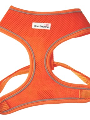 airmesh-harness-orange
