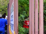 SAN FERNANDO HILLRUN#884 141