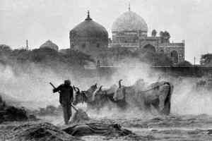 दिल्ली के नहीं कूचे