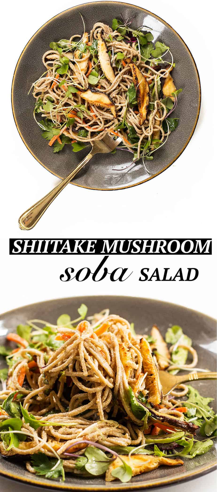 shiitake mushroom soba salad - This cold shiitake mushroom soba noodle salad is perfect for lunch or as a side-dish and is very filling. The peanut sauce dressing boosts the flavor to a new level. This recipe will be ready in less than 15 minutes.