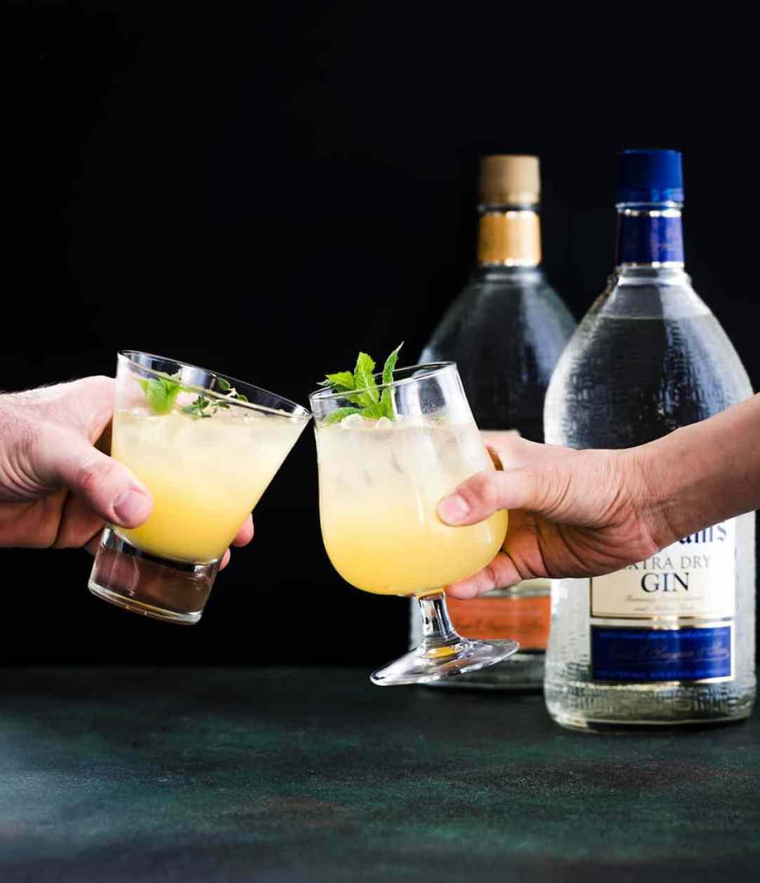 orange gin recipe cocktail seagrams