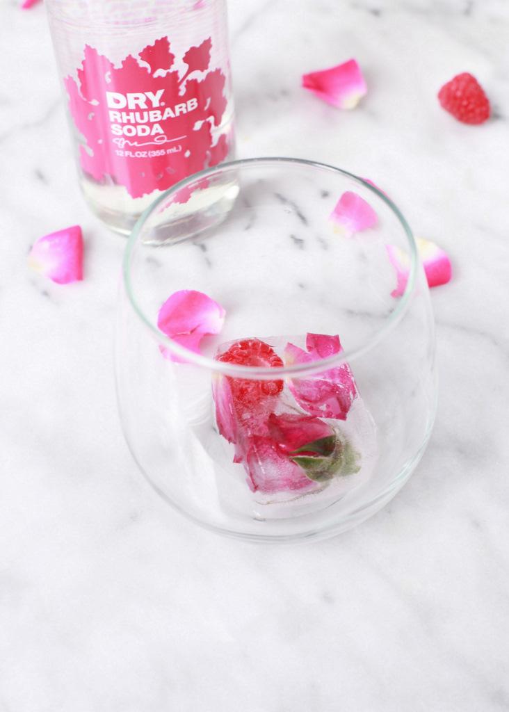 Raspberry Rose Ice Cubes | Posh Little Designs-Diy-beverage