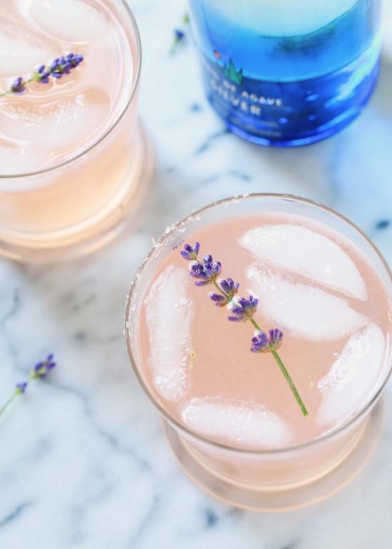 Lavender Paloma | Posh Little Designs