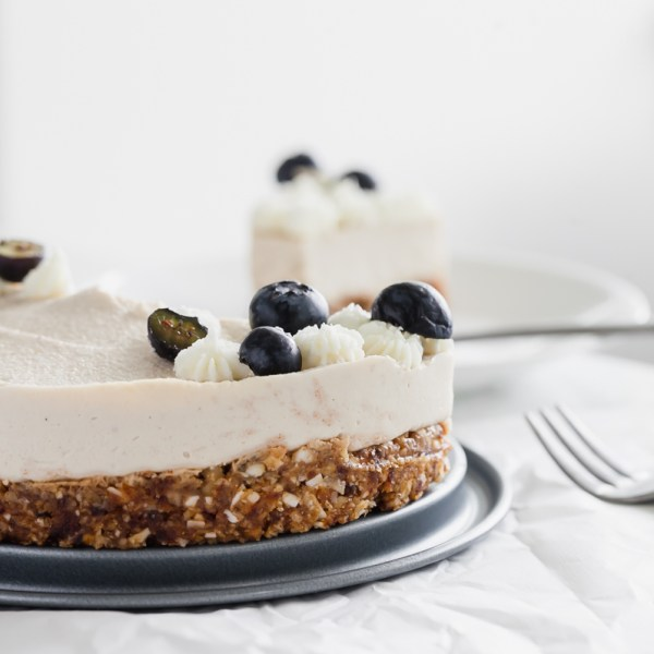 Raw Vegan Coconut Blueberry Cake - Gluten Free - Desserts - Summer - No Bake