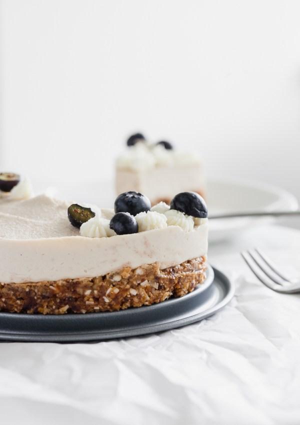 Coconut Blueberry Raw Cake