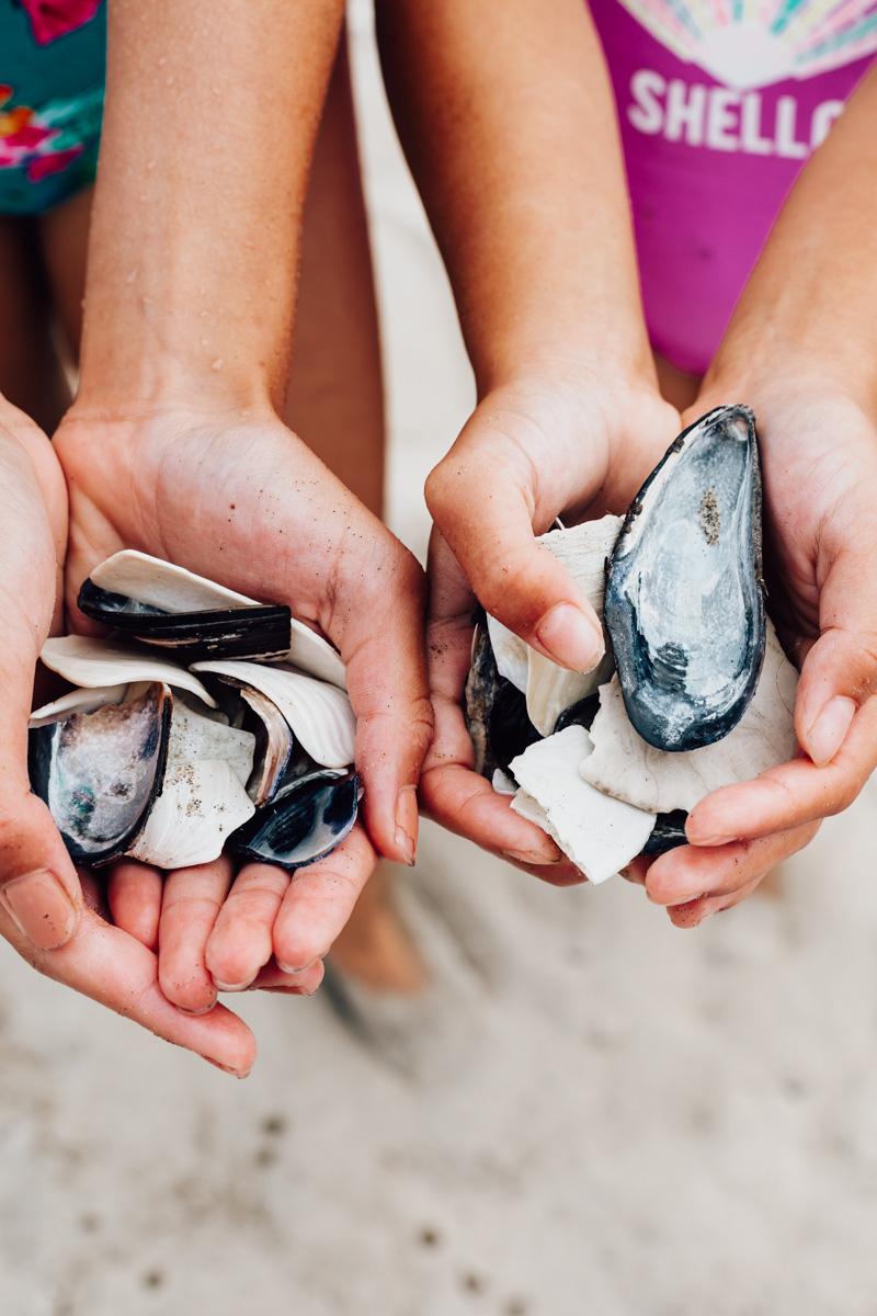 Pacific City, Oregon Coast, Beach travel destinations, seashells