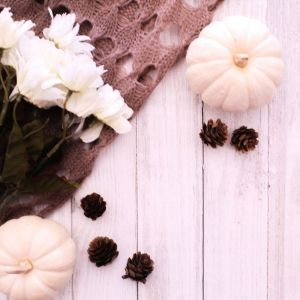 Fall, White Pumpkins, Pine Cones, Knitted Scarf, White Floral, Farmhouse