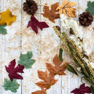 Fall, Leaves, Pine Cones, Fall Floral, Flat Lay