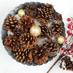Holidays, Christmas, Farmhouse, Pine Cone, Cranberry Tree, Flat Lay Styled Stock Image