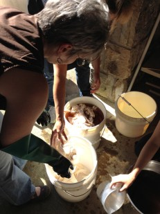 Pre-Treating Cloth in a Tannin Batj