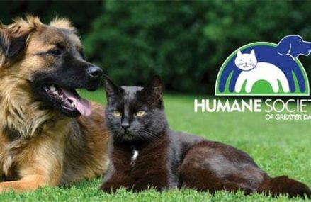 This Humane Society was named as 4-star charity for fiscal responsibility!