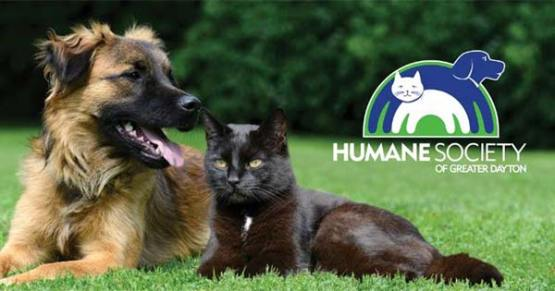This Humane Society was named as 4-star charity for fiscal responsibility! Check it out right here on positive celebrity gossip, charity news as well as all entertainment news!