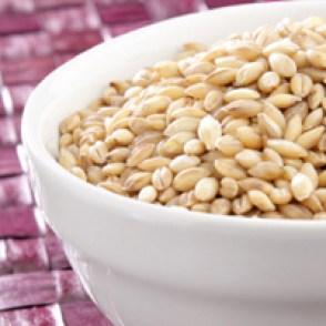 Barley in white bowl