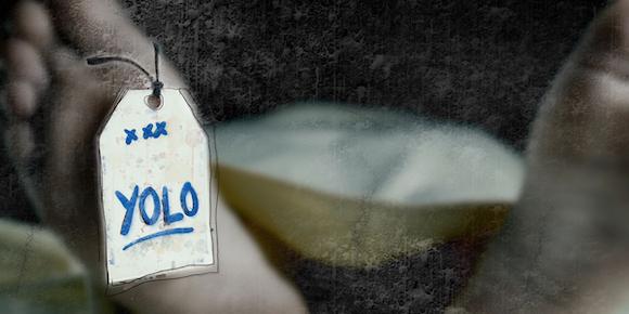 yolo blog