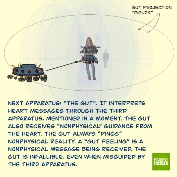 4_Gut_Projection_