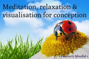 meditation, relaxation, & visualisation for conception