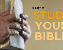 Study Your Bible (2)