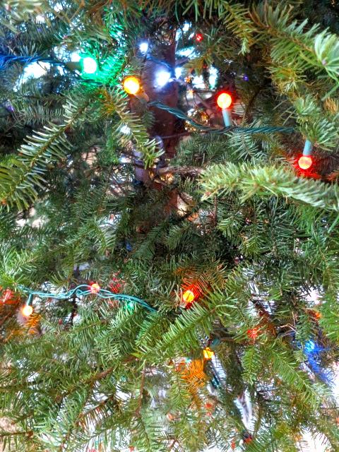 Christmas Tree Glow