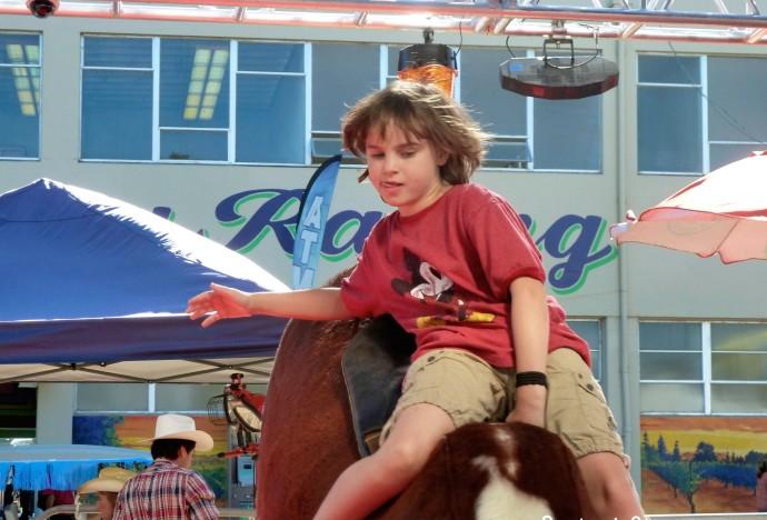 fair bull ride