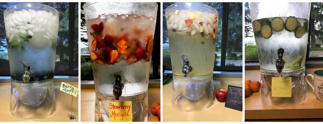 Creative and Delicious Infused Water Flavors