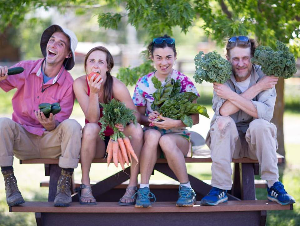 The Dirty Life On Farming Food And Love By Kristin Kimball A