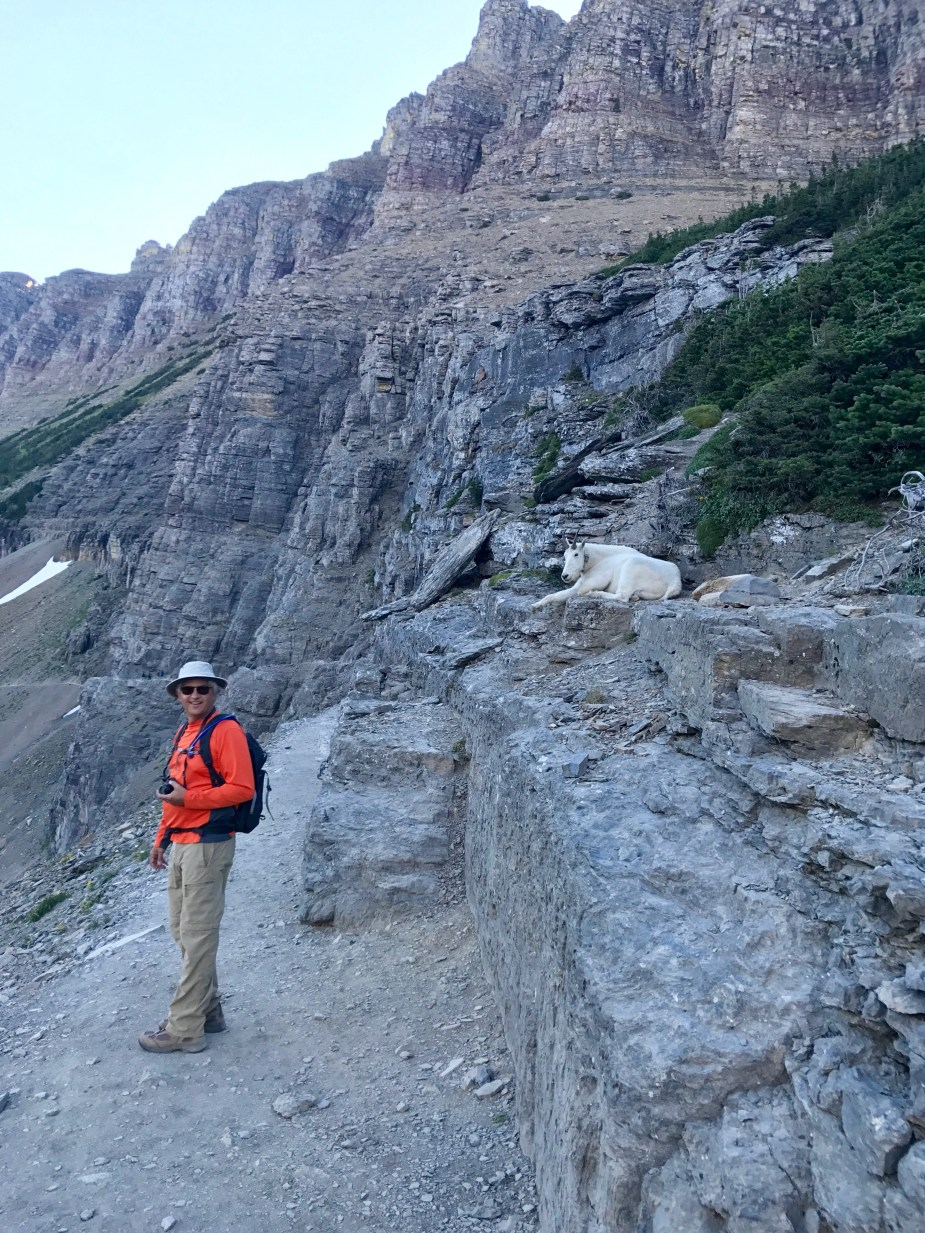 Hiking the Highline Loop in Glacier National Park