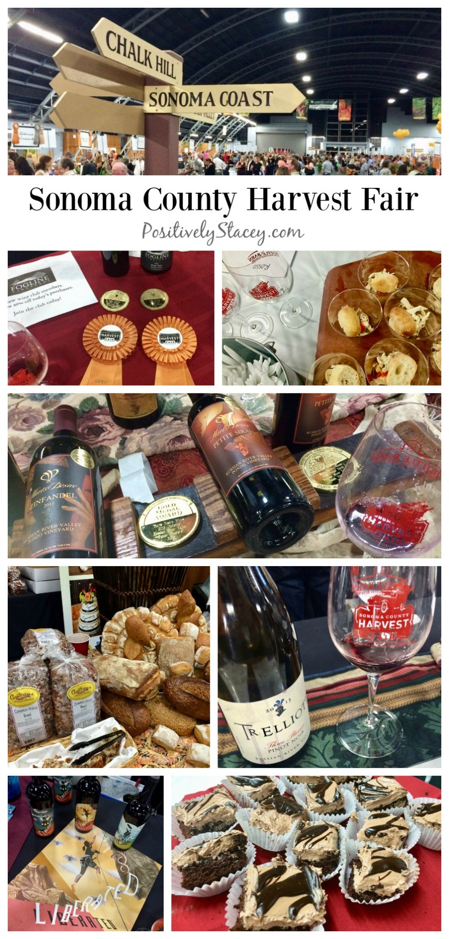 Enjoying the Sonoma County Harvest Fair and a Weekend of Wine Tasting