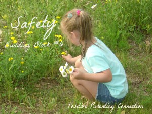 Positive Parenting Connection:Safety